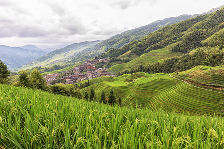 Rural village and terraced rice fields in Longji, China.