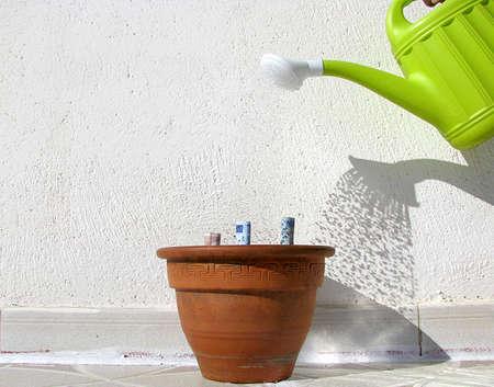 watering money to grow your savings Stock Photo - 16600478