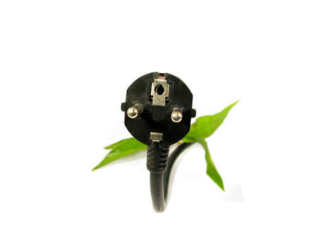 electric plug: leaves grow on an electric plug