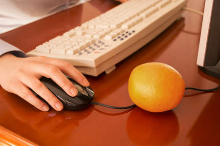 Human hands working on a computer  and two orange to eat