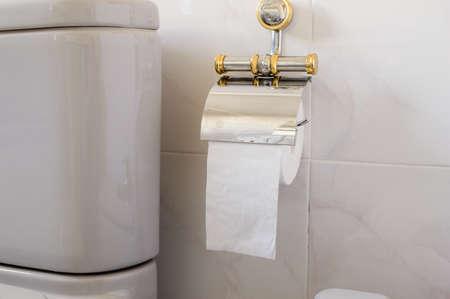 Toilet gray and toilet paper Stock Photo - 18180108