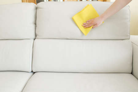 beige sofa cleaning photo