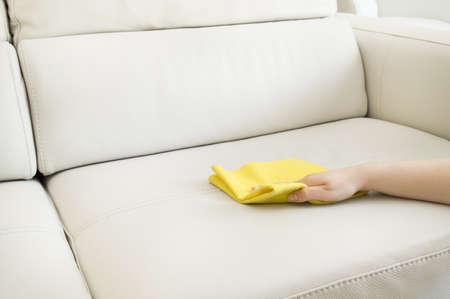 cleaning a beige sofa Reklamní fotografie - 19263967