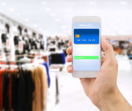 technology transaction: hand holding the phone with mobile wallet online  to shopping on the store