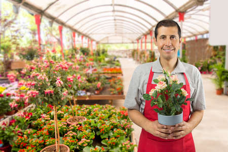 garden flower: florist shopman holding a plant and smiling Stock Photo