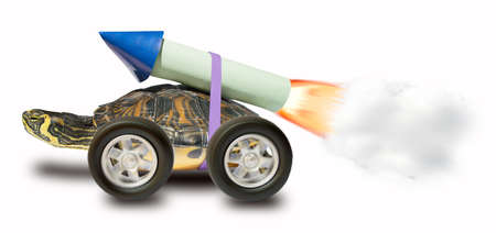 schildkr�te: Schildkr�te mit einem Raketenantrieb zu gehen schneller