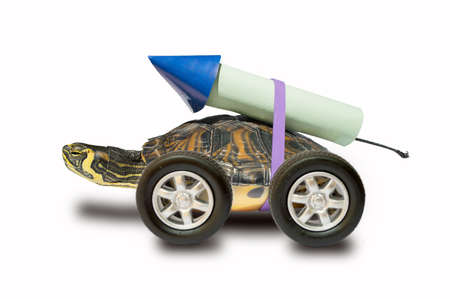 propulsion: turtle waiting to use a rocket propulsion to go faster