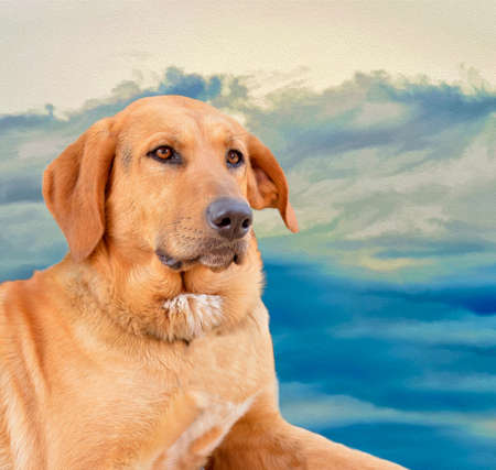edited photo: dog resting with edited photo oil painting background Stock Photo