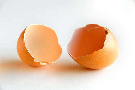 Consumables: eggshell open on the table and white background