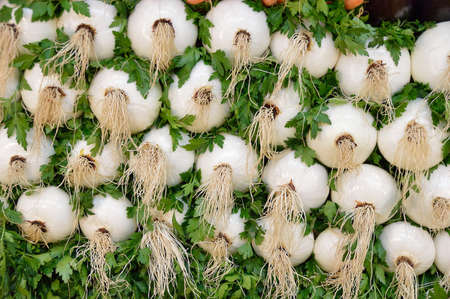 Consumables: Pile of white onions at farmers market Stock Photo