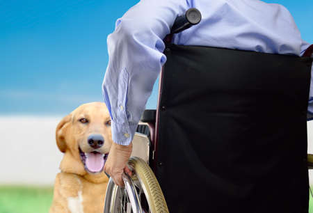 Shot of a man in a wheelchair with her dog Stock Photo