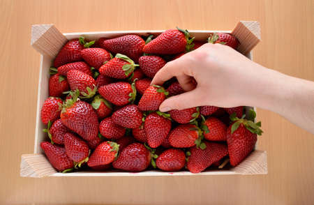 High angle view of woman hand catching up one strawberry in a strawberries wooden box over a wood table