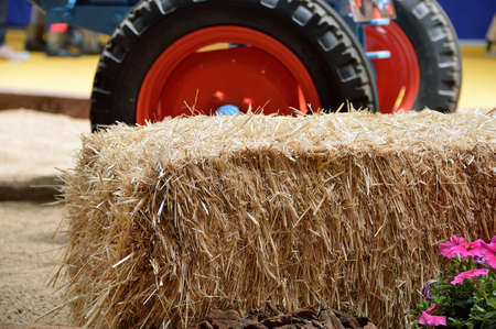 pile of straw with a tractor at the  farm in background Stock Photo