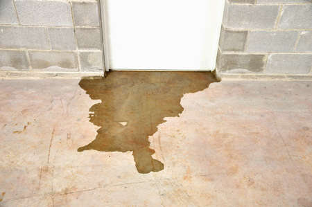 Water damage in basement caused by sewer backflow due to clogged sanitary drain 版權商用圖片 - 100027738