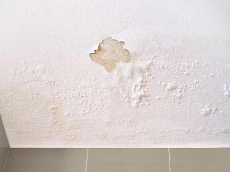 Deckenpaneele beschädigt als Feuchtigkeit im Dach durch Regenwasserleckage.