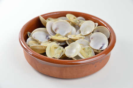 bowl with clams on a white background 版權商用圖片
