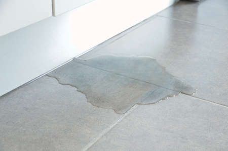 Close-up Photo Of Flooded Floor In Kitchen From Water Leak Reklamní fotografie - 107953041