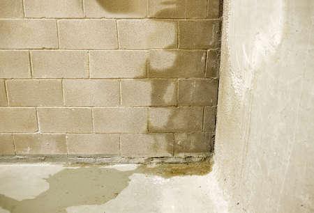 El agua de lluvia se filtra en la pared causando daños.