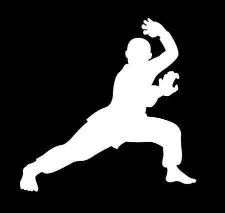 beautiful martial shadow movement, silhouette kungfu