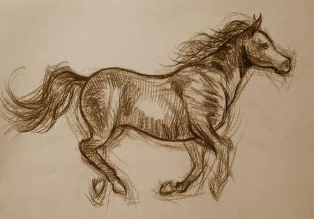 horse drawn: beautiful artistic horse sketch
