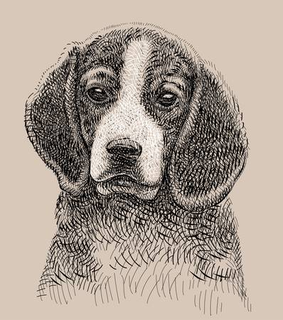 dog artistic drawing Vector