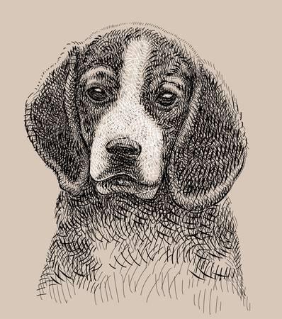 dog artistic drawing Vector