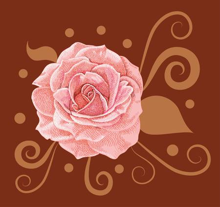 Rose vector decorative Vector