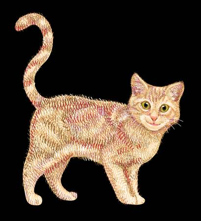 Cute cat drawing with lines and color combination. Beautiful pet animal sketch with artistic brush stroke Vector