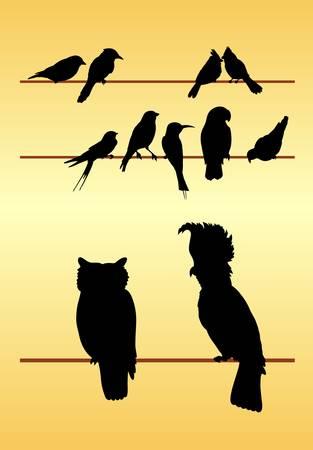 Bird Silhouettes Vector Makkelijk te gebruiken of van kleur te veranderen Vector Illustratie