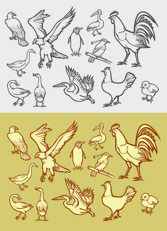 Poultry icons sketch. Animal drawing style for any design you want. Easy to use. Vector