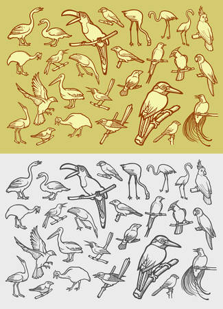 hem: Bird icons hand drawing vintage style Illustration