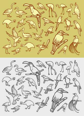 Bird icons hand drawing vintage style Illustration