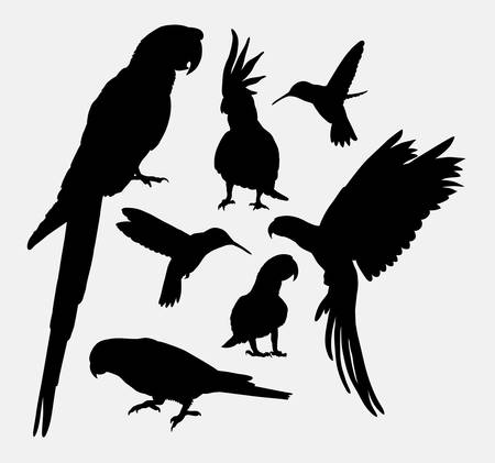 resizable: Parrot and hummingbird silhouettes Illustration