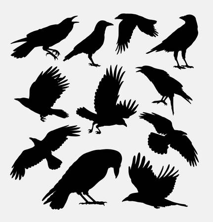 Crow bird, poultry animal silhouette.