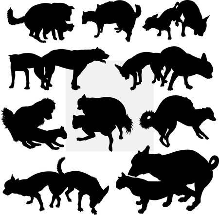 Hundehaustiertier Silhouette 15. Gut für Symbol, Web-Symbol, Maskottchen, Zeichen, Aufkleber Design, oder jede gewünschte Design. Einfach zu gebrauchen.