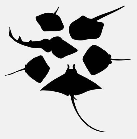 Stingray fish animal silhouette. Bon usage pour le symbole, l'icône Web, la mascotte ou tout design que vous voulez Vecteurs