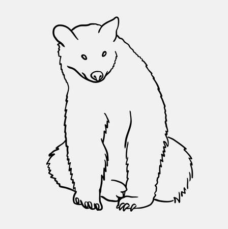 Bear wild animal mammal sketch, drawing. Good use for symbol, logo, web icon, mascot, or any design you want.