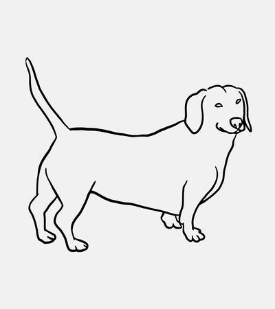 Teckel dog hand drawing. Good use for symbol, logo, web icon, mascot, sticker, sign, or any design you want. Illustration
