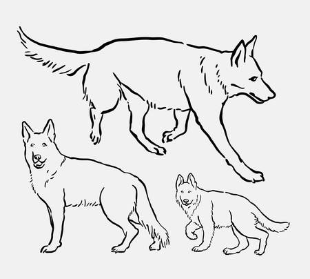 German shepherd pet dog mammal animal sketch. Good use for symbol, logo, web icon, mascot, element, object, or any design you want.