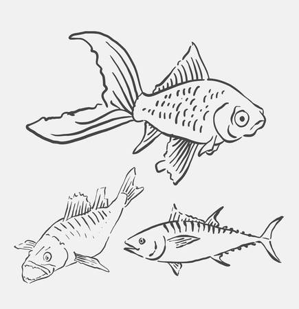 spontaneous painting: Fish pet animal sketch. Good use for symbol, logo, web icon, mascot, element, object, sign, or any design you want. Illustration