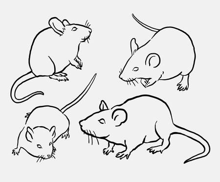 spontaneously: Mouse animal sketch. Good use for symbol, logo, web icon, mascot, sign, or any design you want. Illustration