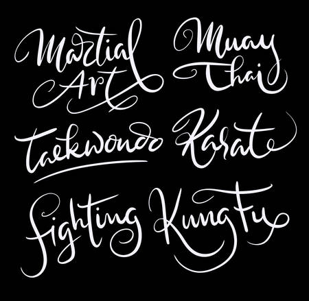 Martial art hand written typography. Good use for logotype, symbol, cover label, product, brand, poster title or any graphic design you want. Easy to use or change color
