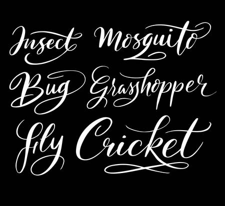 spontaneously: insect and mosquito hand written typography. Good use for logotype, symbol, cover label, product, brand, poster title or any graphic design you want. Easy to use or change color