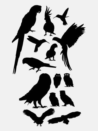 Parrot owl and hummingbird silhouettes