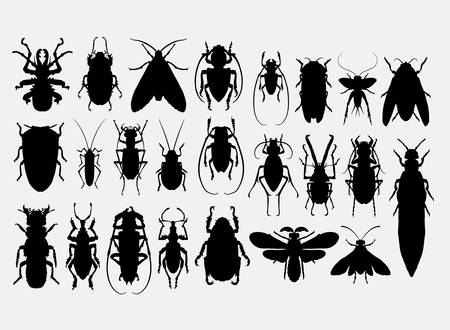 Bug, insect, arachnid animal silhoutte. Ilustrace