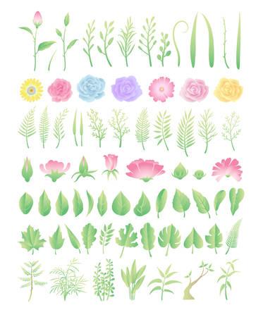 Flowers and leaves design elements Ilustracja