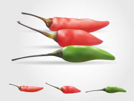 Chili realistic vector gradient mesh