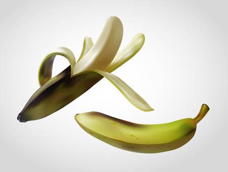 Banana realistic vector gradient mesh