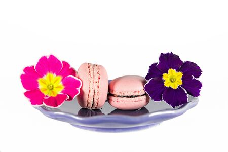 cowslip: macaron and cowslip on saucer