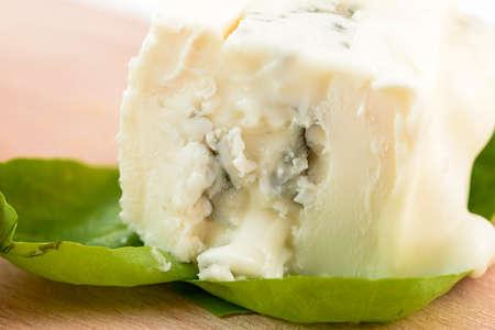 gorgonzola: gorgonzola macro on salad leaves